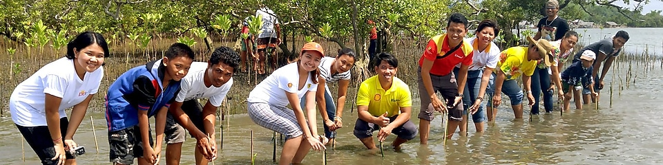 Shell employees at a mangrove